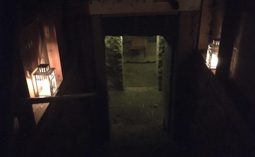 Så går vi ner i vår källare